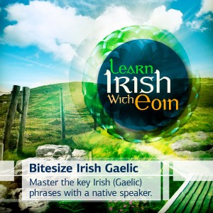 learn to speak irish