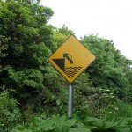 funny Irish road sign