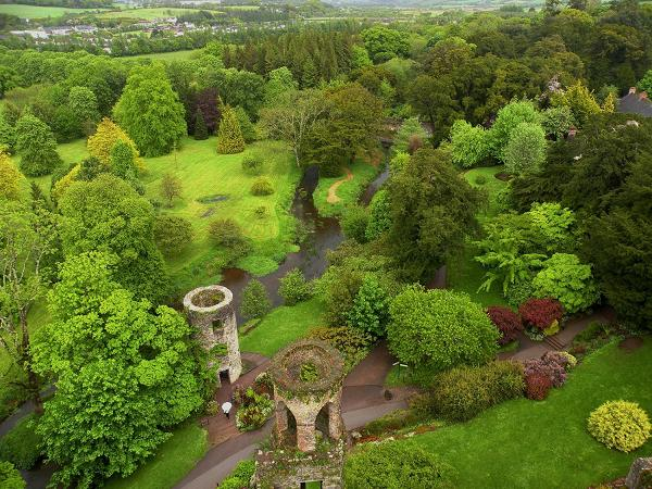 View from atop Blarney Castle