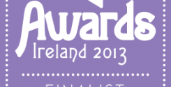 'Got Ireland' a finalist in the 2013 Irish Blog Awards