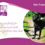 pet friendly BandB in Ireland