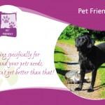 pet friendly BandB in Ireland