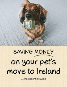 Saving Money on Your Pet's Move to Ireland, the Essential Guide