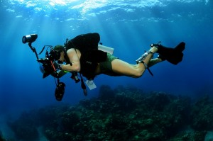 underwater-photographer-618978_960_720